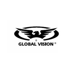 GLOBAL VISION HOME LOGO